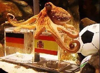 看球引流两不误!用世界杯预测热点来爆粉的玩法要不要了解下