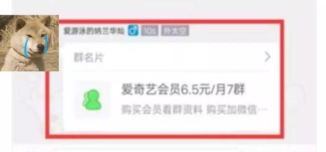 【爱奇艺】边追剧边引流,全方位揭秘爱奇艺精准引流攻略!