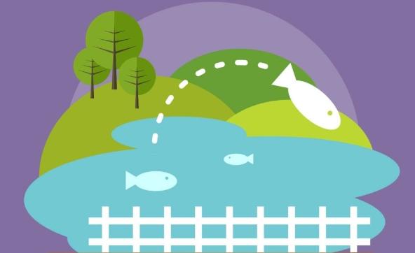 淘客口中引流的4个鱼塘