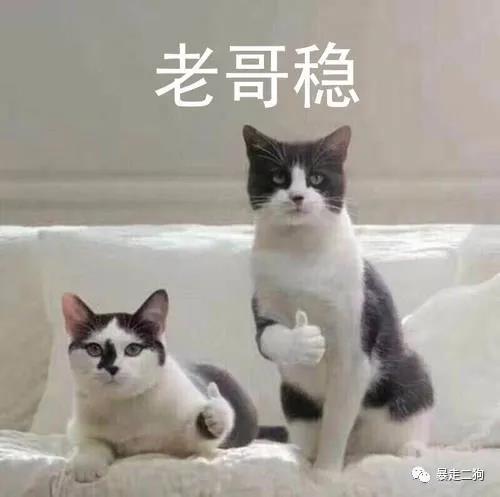淘宝客推广开始影响搜索权重!!